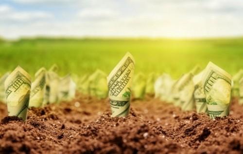 Платники Прикарпаття сплатили до бюджету майже 299 млн грн плати за землю