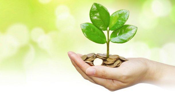 На Прикарпатті суб'єкти господарювання сплатили понад 278 мільйонів гривень екологічного податку