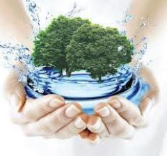 как заполнить экологическую декларацию